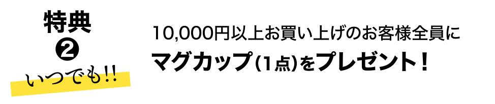 いつでも 特典2 10,000円以上お買い上げのお客様全員にマグカップ(1点)をプレゼント!
